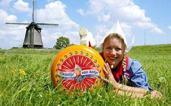 Vores oste sortiment: Frisk ost fra Holland