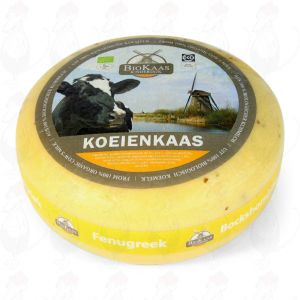 Biologisk bockhornsklöverost | Hela ost 5,4 kilo