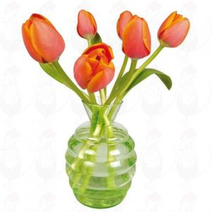 Orange tulips Window Decal - Flat Flower - 30 x 30 cm