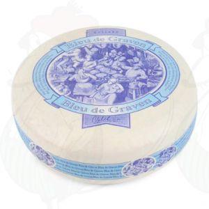 Blue de Graven - Holländsk Blåmögelost - Vegetarisk Ost | Hela ost 3,5 kilo