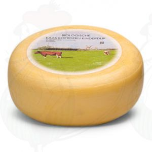 Young matured Organic cheese | Entire cheese 5,4 kilo / 11.9 lbs