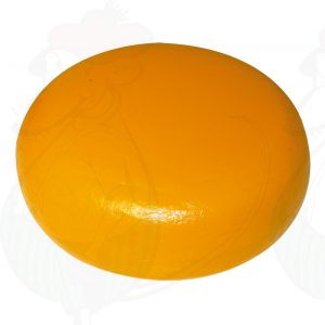 Cheese Dummy Gouda (model) - 4kg