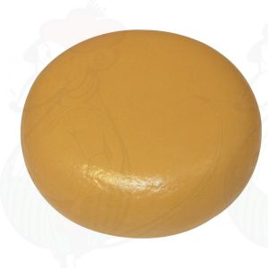 Cheese Dummy ECO Gouda (model) - 4kg